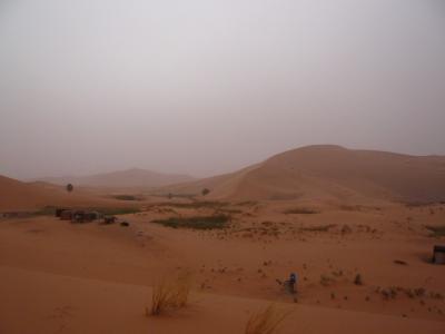 2泊3日砂漠ツアー(ラクダ乗りとテント宿泊)9