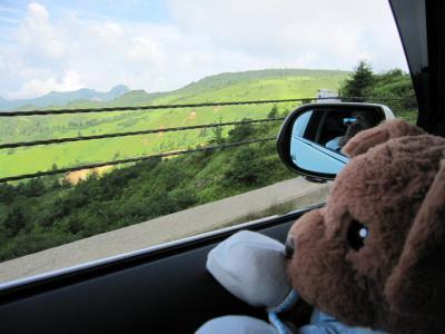 ロッキーと車窓