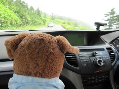 ロッキーと車窓2