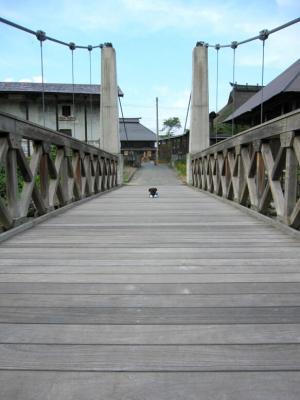 大出の吊橋4