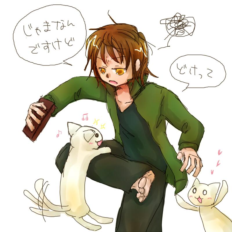 タツキと猫