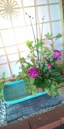 今日のお花(5月21日)