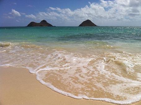 2010 natu  hawaii 018
