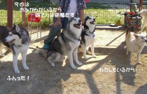 2009 10月愛ハス 010