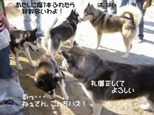 2009 10月愛ハス 021