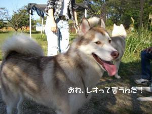 2009 10月愛ハス 026