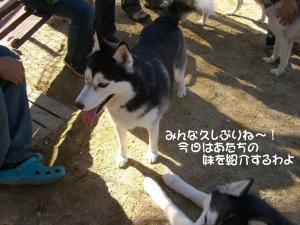 2009 10月愛ハス 013
