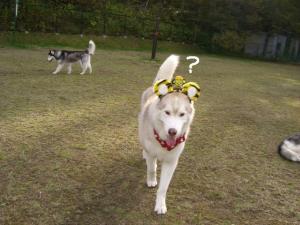 2009 10月HUS☆HUG 191