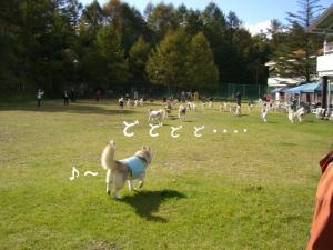 2009 10月HUS☆HUG 1691