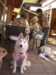 2009 10月HUS☆HUG 242