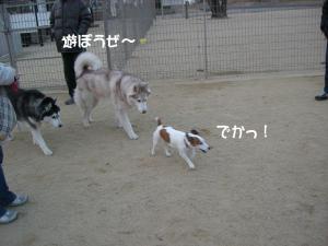 2010 1月大高ラン 006