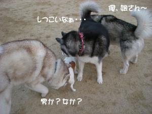 2010 1月大高ラン 009