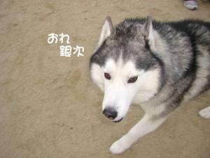 2010 1月大高ラン 002