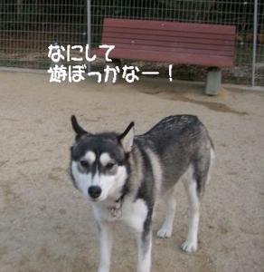 2010 1月大高ラン 011