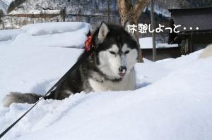 2010 1月白川郷 068