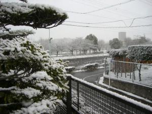 2010 2月浅間チャレンジ 004