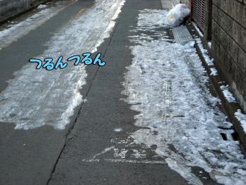 近所の道路