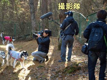 テレビの撮影隊