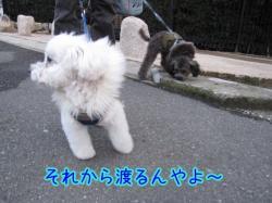 IMG_5318.jpg