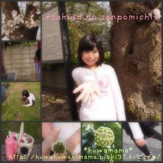 桜の散歩道Sサイズ