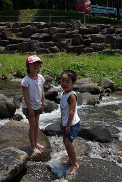 20110717ケヤキの森younobu