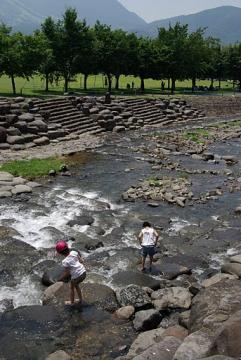 20110717ケヤキの森の川