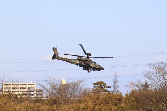 2012narashino_u01.jpg