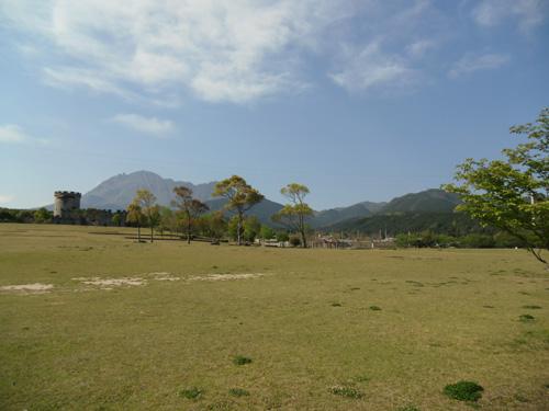 朝一の公園。