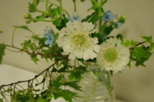 鈴木さんお花2
