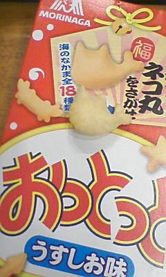moblog_93d60a5a.jpg