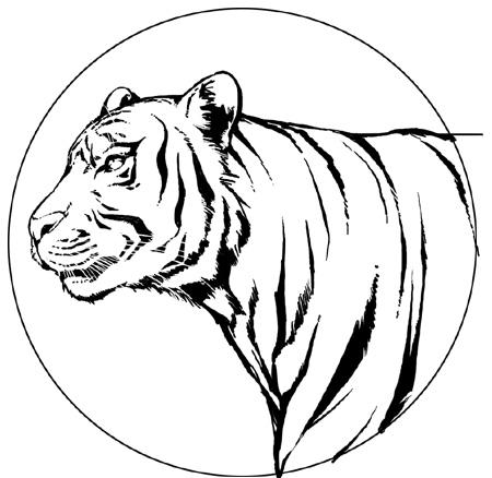 100101虎