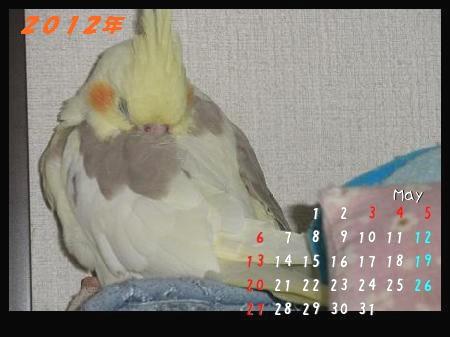 201205ぷく