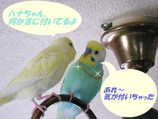 IMG230328-1.jpg