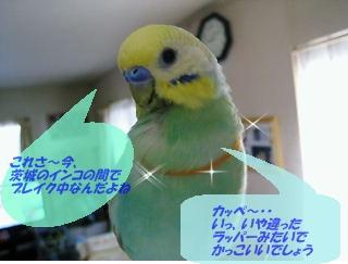 IMG230328-2.jpg