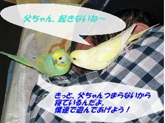 IMG230331-2.jpg