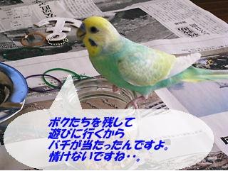 IMG230404-2.jpg