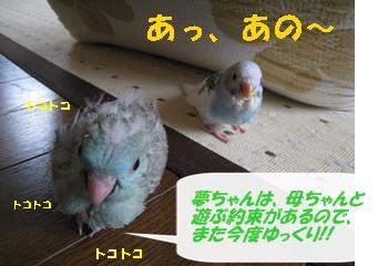 IMG230421-2.jpg