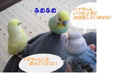 IMG230421-3.jpg