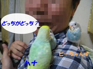 IMG230422-3.jpg