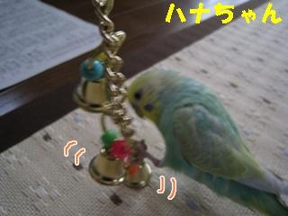 IMG230425-2.jpg