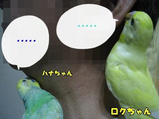 IMG230701-3.jpg
