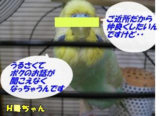 IMG230702-3.jpg
