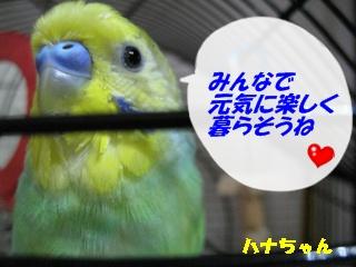 IMG230706-2.jpg