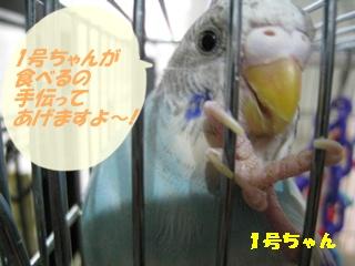 IMG230706-4.jpg