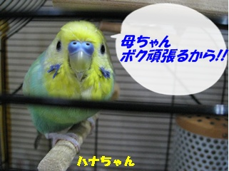 IMG230707-1.jpg