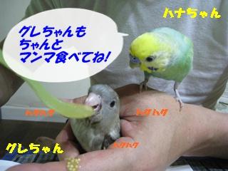 IMG230707-2.jpg