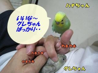 IMG230709-5.jpg