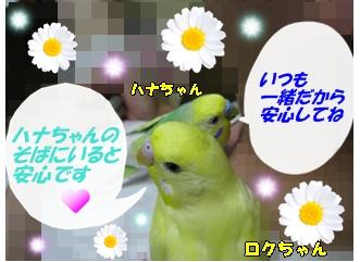 IMG230713-1.jpg