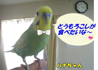 IMG230715_3.jpg