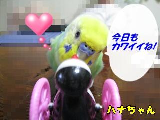 IMG230722-2.jpg